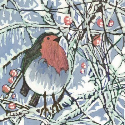 Camphill Village Trust Christmas cards & gifts on sale now