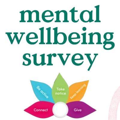 Mental Wellbeing Survey
